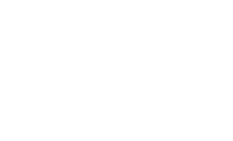 USPS Eagle Logo